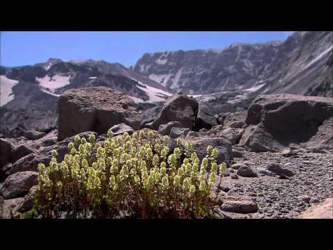 PBS NOVA  Mount St Helens 720p HDTV