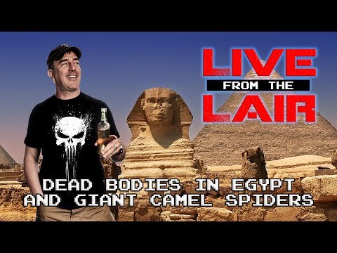 Dead Bodies and Camel Spiders   Live From The Lair