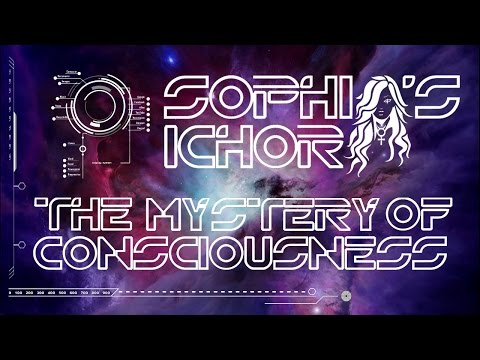 The Mystery of Consciousness | Bringing the World into Being