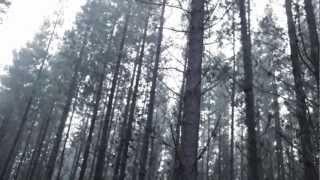 Munro Melano - Somersault (Official Video)