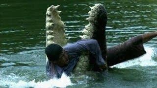 Нападение крокодилов на людей. Подборка!