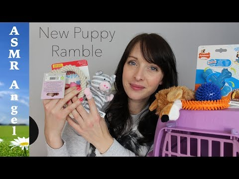 I'm getting a puppy - ASMR Softly Spoken Ramble