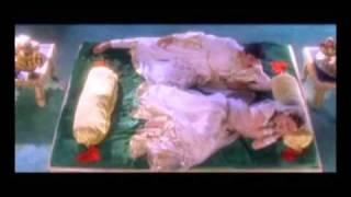 Ajanta Ellora- New version