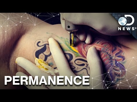 How Tattoos Get Under Your Skin... Literally