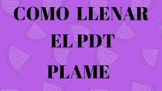 como llenar planilla electrónica - PDT Plame - Como declarar el PDT PLAME