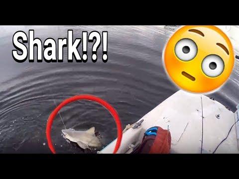 INSANE Day Of Tarpon Fishing! And I Caught My First SHARK!