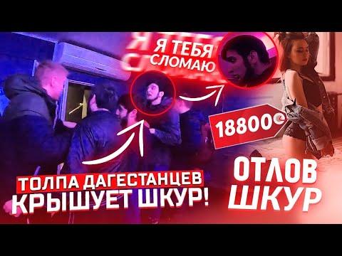 ОНИ КРЫШУЮТ 'ШКУР'!