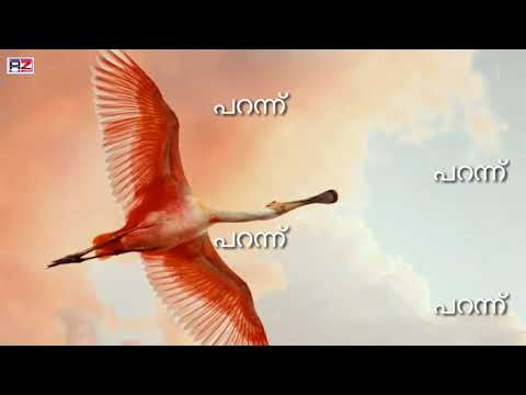 Parannu Parannu new Song Whatsapp status video Kidu malayalam movie