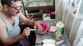 Содержание кормление птенцов Жако