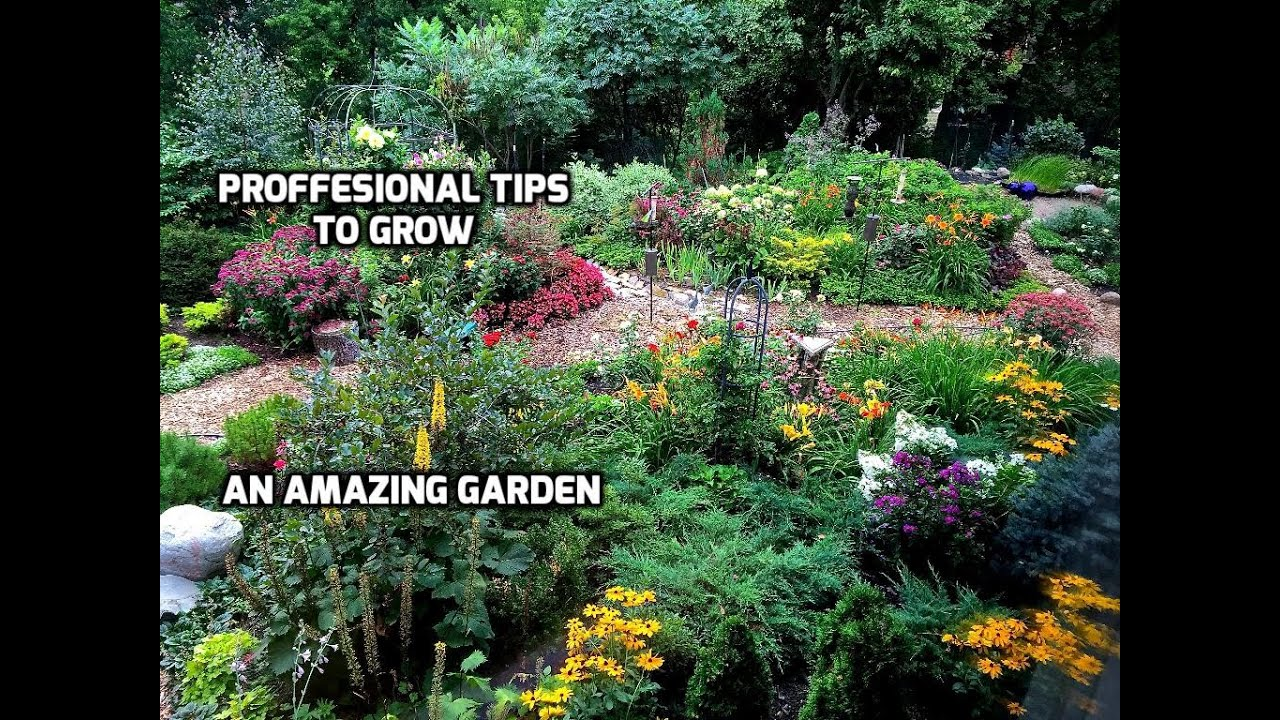 Professional Tips To Grow An Amazing Garden Youtube
