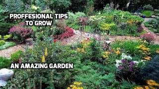 Professional Tips to Grow an Amazing Garden