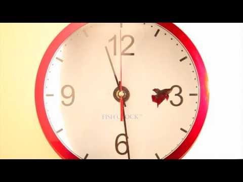 Aquavista Fish Tank Clock Aquarium SKU#52966 - Plow & Hearth