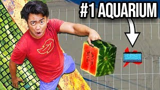 Dropping Watermelons VS Aquarium From 500cm ~ Splash