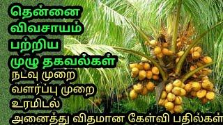 தென்னை விவசாயம் பற்றிய முழு தகவல்கள் Coconut cultivation. Full details about Coconut cultivation