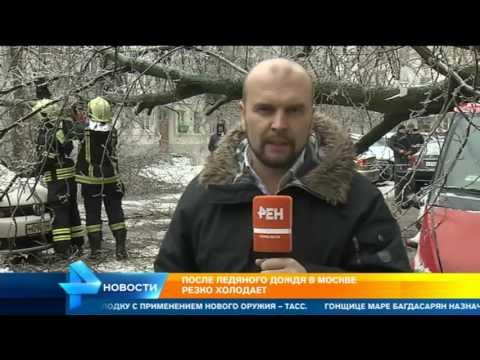 Стало известно о первых погибших от ледяного дождя в Москве и Подмосковье