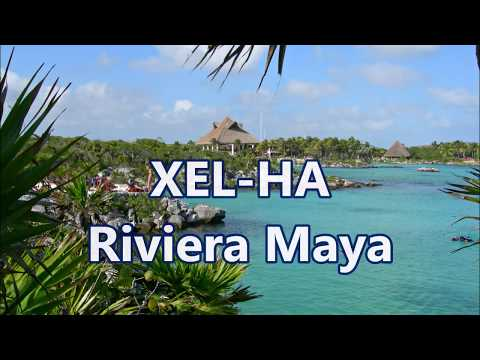 XEL-HA - Riviera Maya - Mexico  [HD]