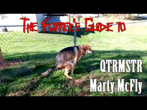 Flipper's Guide to QTRMSTR Marty McFly