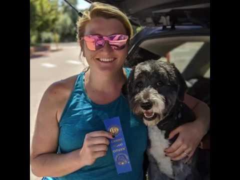 Canine Good Citizen Test in Denver