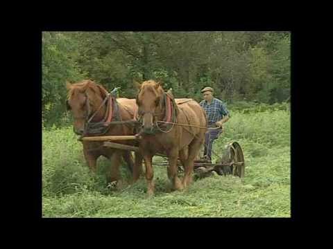 A Man For All Seasons - Roger Clark Traditional Farmer & Farrier (Trailer for DVD)