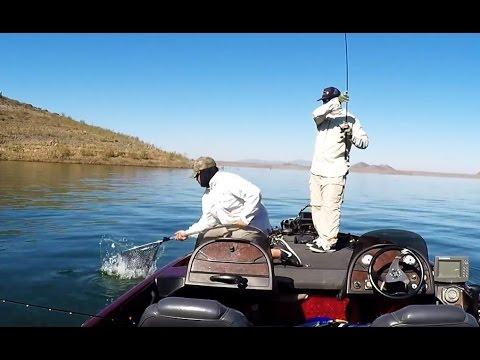 Bass fishing aba diamond valley lake tourney sept 17th for Diamond valley fishing report