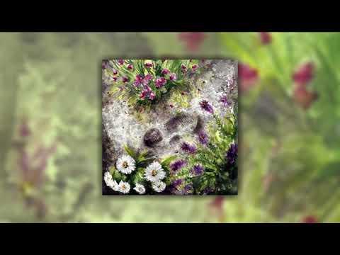 Birdspotter - A Garden Everywhere You Go [FULL ALBUM] ZT119