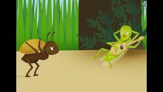 La cigarra y la hormiga - cuentos infantiles en español