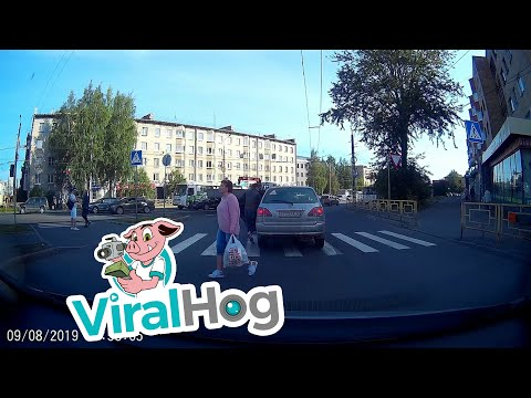 Amy James - Man Climbs Through A Car Blocking Crosswalk To Cross The Street