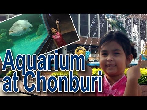 Travel : Aquarium at Chonburi : Thailand l Melis Tv