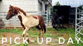 Pick-Up Day | 2019 Mustang TIP Challenge