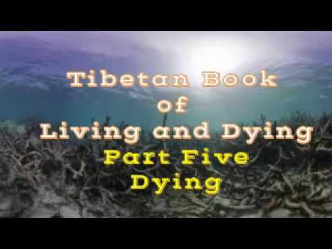 HARD ADVISE ON HELPING THE DYING -TIBETAN BOOK OF LIVING AND DYING - Sogyal Rinpoche -lomakayu