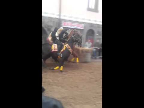 "Paulilatino carnevale a cavallo 2016 :""Sa cursa a sa pudda"""