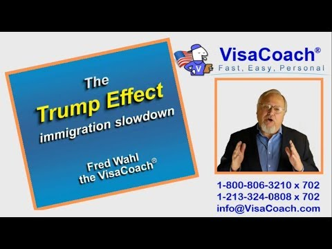 "USCIS immigration processing delays: ""Trump effect"""