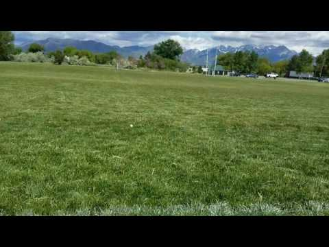 Metal detecting Salt Lake City Park