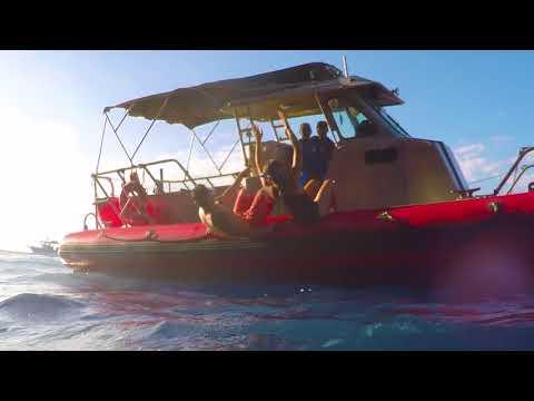 Maui, Hawaii: Natural Wonders in Lahaina