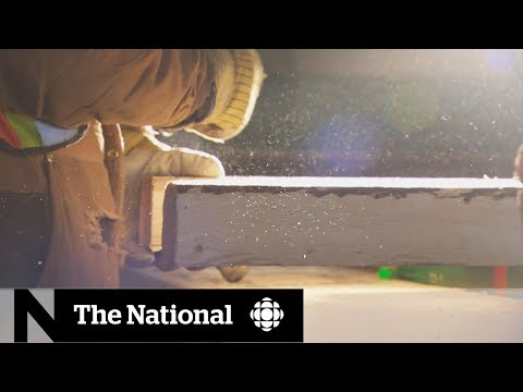 Why 25 B.C. Lumber Mills Have Stopped Operating