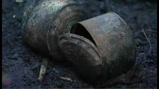 Сгоревшему приюту для бездомных животных требуется помощь. В Челябинске объявлен сбор добровольцев