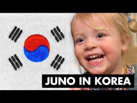 We took Juno to KOREA!!