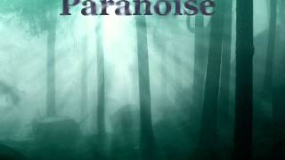 Paranoise-Waterfalls (Paranoise Ambient Dub)