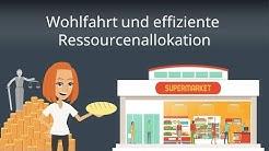 Ökonomische Wohlfahrt und Ressourcenallokation - Wohlfahrtstheorie einfach erklärt