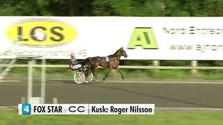 Vidéo de la course PMU PRIX UNG I NORR - TREARINGSLOPP