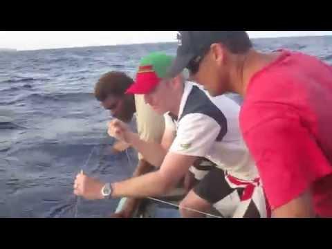 Aniwa Fishing II