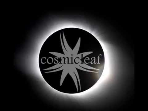 #8 Discovering Cosmicleaf.com - Mix & Selection by Dense
