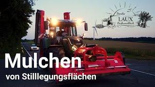 Mulchen Fendt 724 / Stilllegung mulchen mit Dragon Großflächenmulcher 2017, *[Full HD]*