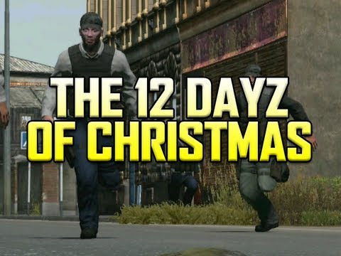 The 12 DayZ of Christmas