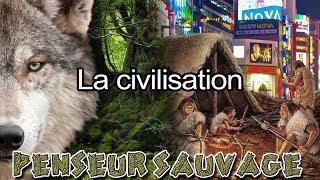 De l'état sauvage à l'anthropocène | La civilisation - Animaux CH.2 EP.09