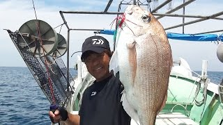 島根県大田市沖でのマダイ釣りの模様です。バンガードのシリコーン製タ...