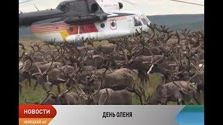 В Ненецкой тундре стартовали праздничные мероприятия, посвященные Дню оленя