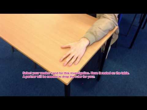 Nervous system experiment