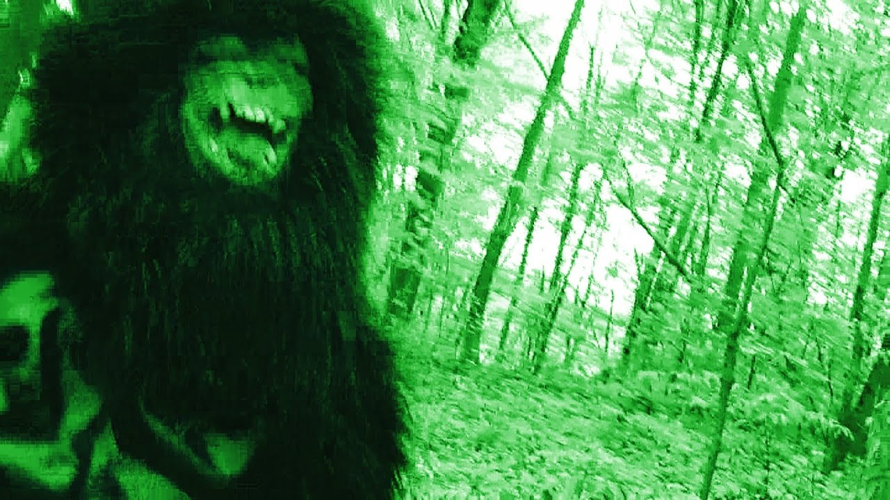 bigfoot caught in russia