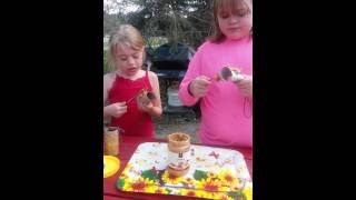 Kid's - How To Make Diy Peanut Butter Bird Feeder